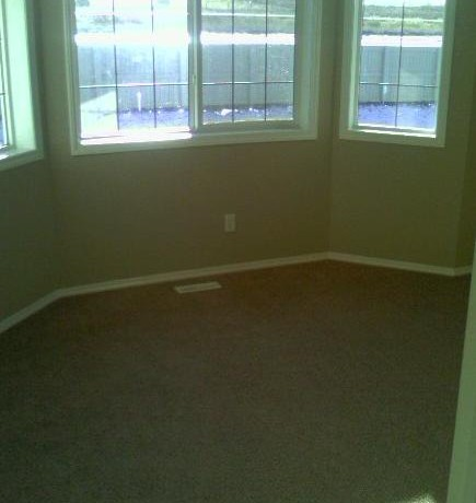 131 Cimarron Grove Circle Bonus Room