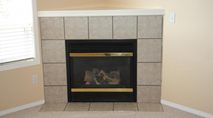 31-156 Canoe Dr Fireplace