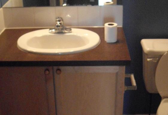 751 Copperfield Blvd SE Bathroom 2