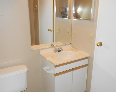87 Martinbrook Road NE Bathroom 1